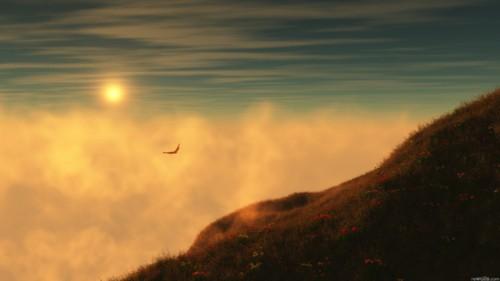 oiseau-soleil-3a.jpg