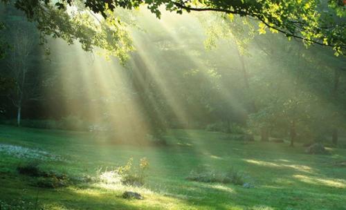 Alphonse de la Mère des Douleurs,présence divine,Dieu