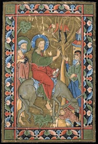 Rameaux,Jérusalem,Jésus,Christ,ânon,Hosanna,acclamation,Christ Roi,Passion