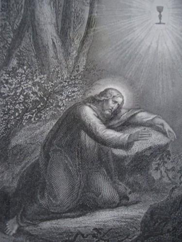 Gethsemani_6a.jpg