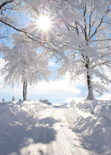 chemin-neige-soleil_1a.jpg