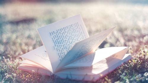 Charles de Foucauld,perfection,saints,sainteté,bonne,mauvaise,lecture,livre,lire