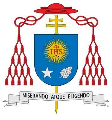 pape,françois,messe,pro ecclesia,homélie,cheminer,édifier,confesser,jésus-christ,croix,eglise,saint esprit,marie