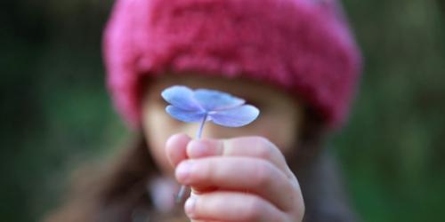 enfant_fleurs_11a.jpg