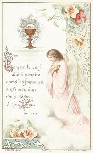 P. Ponsard,mystère,communion,eucharistie,nourriture,faiblesse,force,charité,coeur,hostie,présence,Christ,amour,bonheur