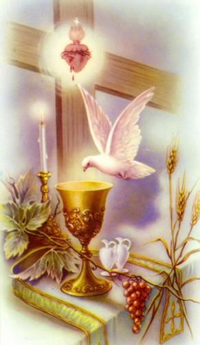 prière,Amende honorable,office,Précieux Sang,seigneur,Jésus,passion,croix,couronne d'épines,flagellation,crucifixion,clous,côté,coeur,parce domine,réparation