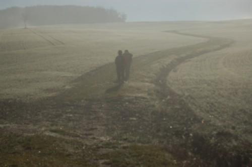 chemin-brouillard.jpg