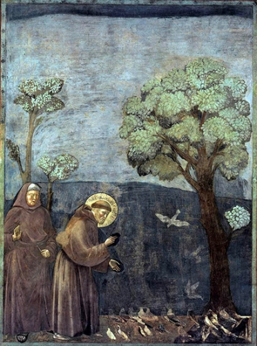 Saint_Francois_d_Assise_Giotto_2b.jpg