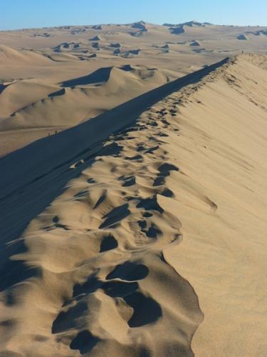 desert_pas_22a.jpg