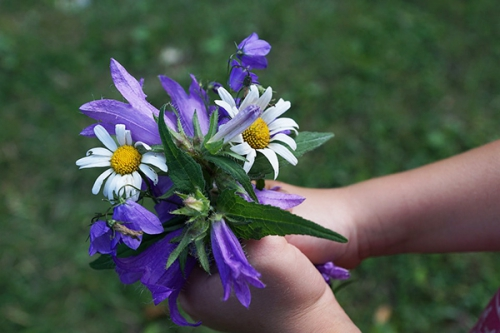 mains-fleur_4a.jpg