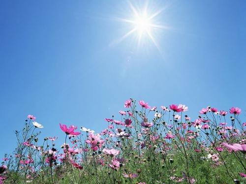 Augustin Guillerand,bonté,Dieu,source,don de soi,lumière,chaleur