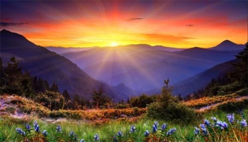 montagne-fleurs-soleil_2a.jpg