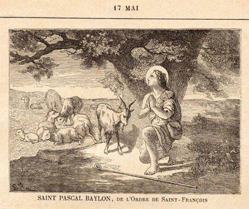 Saint_Pascal-Baylon_1b.jpg