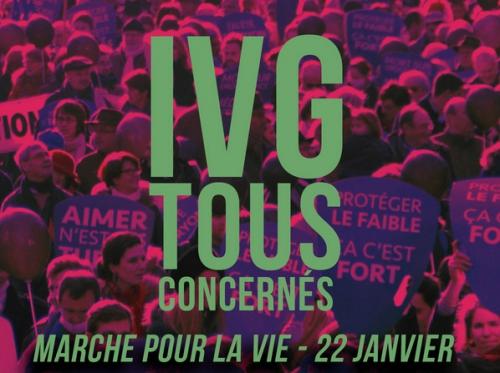 marche-pour-la-vie-2017_2.jpg