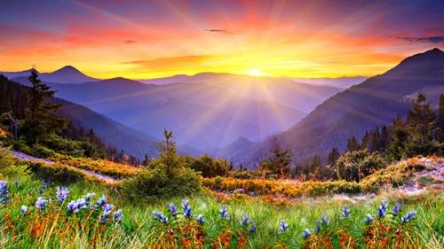 R.P. Mortier,Dieu,amour,aimer,prochain,coeur,vérité,perfection,commandement,plénitude