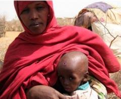 ethiopie,famine,sécheresse,enfants,dénutrition,morts