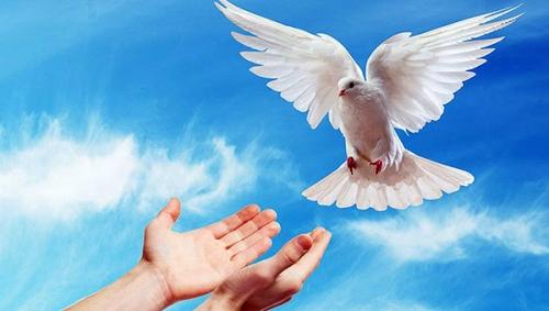 Fénelon,Pentecôte,Esprit Saint,Jésus,Christ,vérité,âme,amour