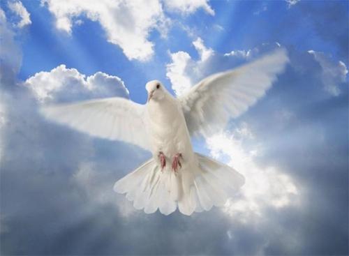 Abbé Victorien Bertrand,orgueil,ambition,égoïsme,cupidité,haine,vengeance,jalousie,guerre,frères,famille,paix,joie,charité,bonheur