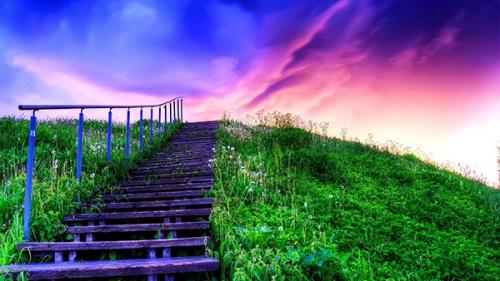 J. Guibert,vie,emploi,temps,jugement,conscience,réussite,dévouement,grâce,volonté,labeur,travail,fruit,réussite