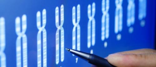 eugénisme,tri,embryonnaire,embryons,dépistage,anomalies,génétiques,chromosomiques,trisomie 21