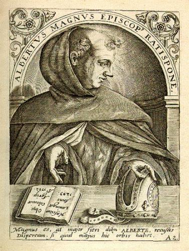 St Albert le Grand,religieux,dominicain,évêque,docteur de l'Eglise