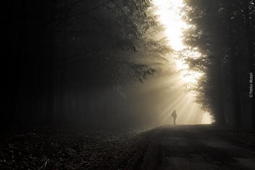 progrès,vertu,présence,Dieu,conversation,Abraham,marche,parfait,offense,crainte,respect