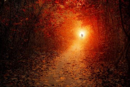 chemin_soleil_5a.jpg